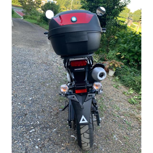 ホンダ(ホンダ)のホンダ MSX125(国内名グロム) 自動車/バイクのバイク(車体)の商品写真