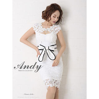 Andy - Andy ドレス 美品
