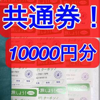 チャレンジさん用【共通券】今こそ滋賀を旅しよう【しが周遊クーポン】(その他)