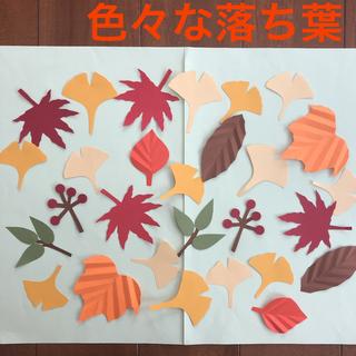 色々な落ち葉壁面飾り/秋壁面/ 壁面飾り