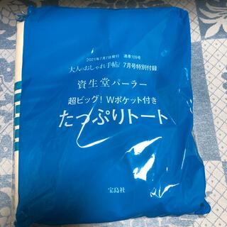 シセイドウ(SHISEIDO (資生堂))の★雑誌付録 資生堂パーラー 超ビック! Wポケット付きト-ト🎀★(トートバッグ)