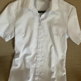スーツカンパニー(THE SUIT COMPANY)のパーフェクトスーツファクトリー半袖ブラウス(シャツ/ブラウス(半袖/袖なし))