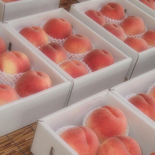 山梨の甘い桃 大玉を2キロの箱に6個詰め発送 今だけ 限定数箱 あと僅か