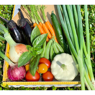 畑直送、無農薬新鮮野菜(野菜)