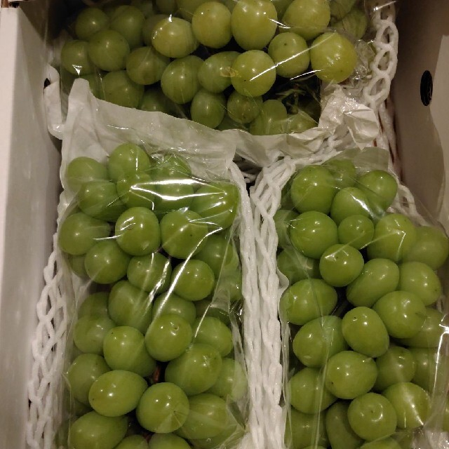 シャインマスカット2kg 食品/飲料/酒の食品(フルーツ)の商品写真