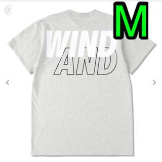 WIND AND SEA Tシャツ グレー m ウィンダンシー