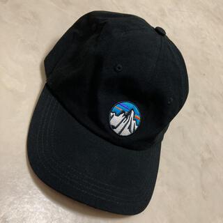 patagonia - パタゴニア キャップ帽