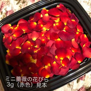 お得用!ミニ薔薇の花びら3g(赤色)ドライフラワー★花弁ミニローズ押し花素材にも