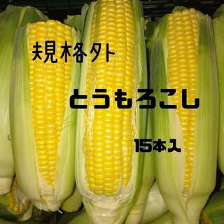 規格外とうもろこし(黄色)15本