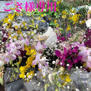 ゾウジルシ(象印)の美品 ZOJIRUSHI EE-RM50(WA) 象印 加湿器 2017(加湿器/除湿機)