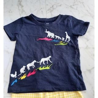 プティマイン(petit main)のgraniph Tシャツ、スパッツセット(その他)