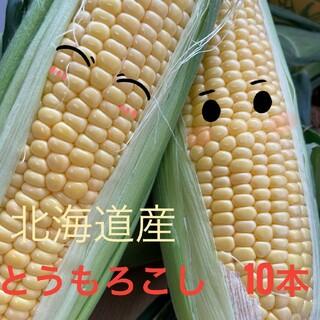 北海道産とうもろこし【10本入】(野菜)