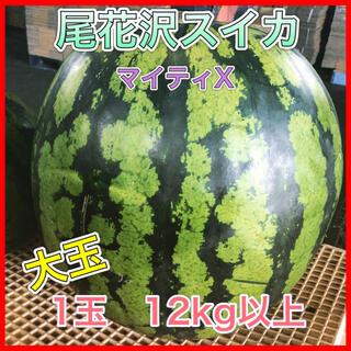 8101 尾花沢スイカ マイティX 1玉12kg以上 大玉 訳あり 西瓜