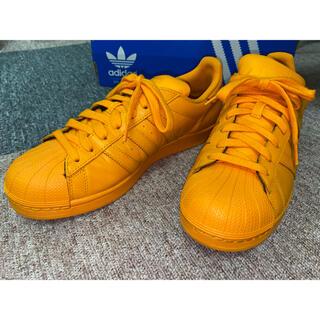 adidas - adidas Pharrell William SUPER STAR スニーカー