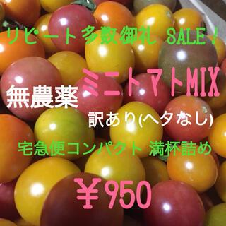 無農薬 ミニトマト 品種MIXいろいろ 詰め合わせ(ヘタなし)(野菜)