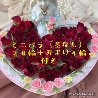 ミニ薔薇(茎なし)ドライフラワー★20輪セット+おまけ4輪付き!限定サービス特価