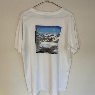 patagonia - パタゴニア ベネフィシャル Tシャツ 90s トムキリオン