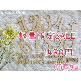 0追加 20点セット♡即購入OK♡木製レターバナー マンスリーフォト