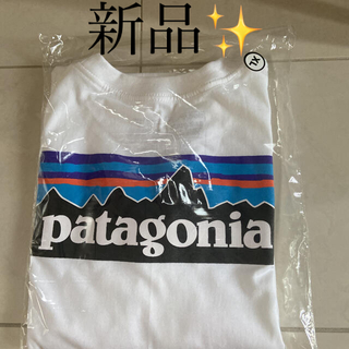 patagonia - パタゴニア 半袖Tシャツ  新品✨正規品