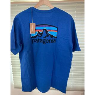 patagonia - パタゴニア Tシャツ M サイズ