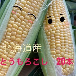 北海道産とうもろこし【20本入】(野菜)
