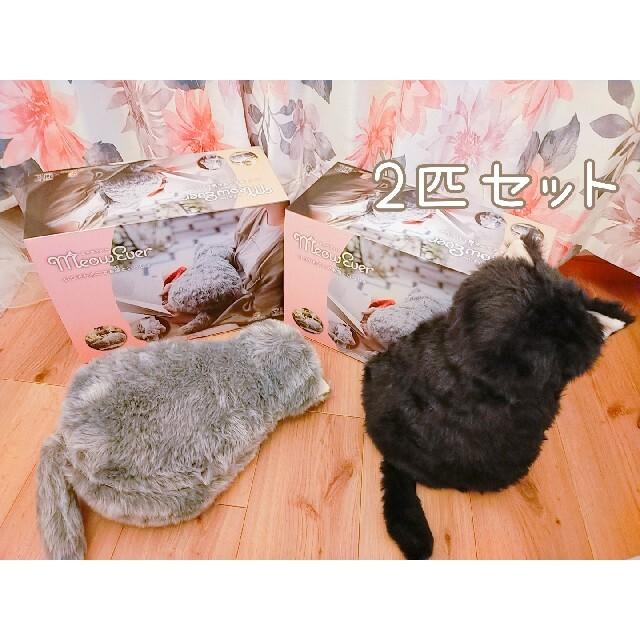 ミャウエバー 2匹セット エンタメ/ホビーのおもちゃ/ぬいぐるみ(ぬいぐるみ)の商品写真