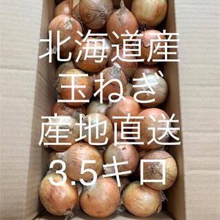 北海道産玉ねぎ 3.5キロ