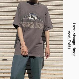 Santa Monica - 90s 古着 リゾート Tシャツ USA製 アースカラー ビンテージ