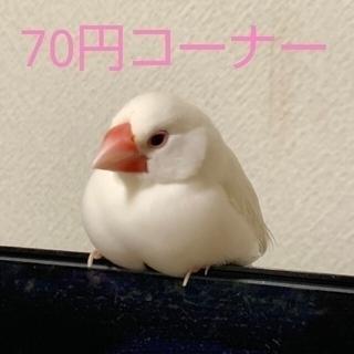 1つ70円(キャラクターグッズ)