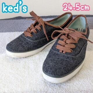ケッズ(Keds)の【Ked's】チャンピオン ウール 24.5cm 美品【ケッズ】(スニーカー)