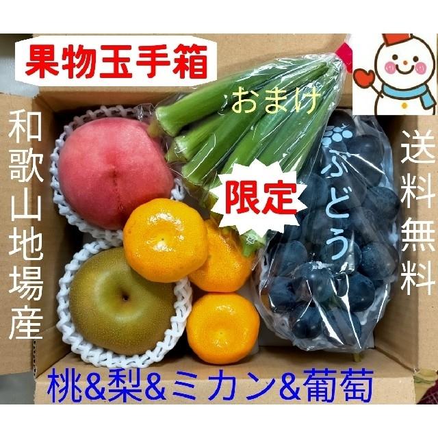 恒例❗旬の果物玉手箱♥和歌山雪だるまから 食品/飲料/酒の食品(フルーツ)の商品写真