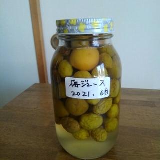 梅ジュース(中) 600ml(漬物)