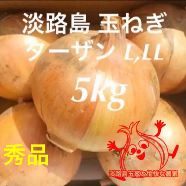 淡路島 完熟 玉ねぎ 5kg たまねぎ 玉葱 タマネギ 食品/飲料/酒の食品(野菜)の商品写真