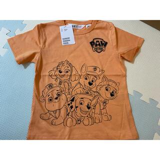 H&M - H&M パウパトロール Tシャツ