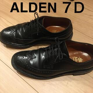 Alden - オールデン ALDEN 7D 5回着用 ウィングチップ