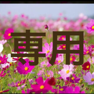 Sー0316専用 0743(その他)
