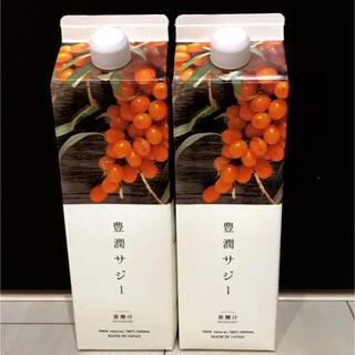 フィネス 豊潤サジー 黄酸汁 1000ml  【2本セット】