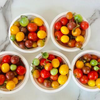 カラフルガーデンミニトマト ミックス 1kg  フレッシュハーブ付き(野菜)