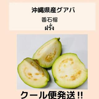 沖縄県無農薬グァバ白 2kgクール便(フルーツ)