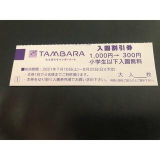 たんばらラベンダーパーク 割引券1000円→300円