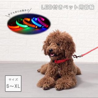 光る首輪 大型犬 中型犬 ベルトタイプ 首輪 光る 首輪 ペット 犬 散歩