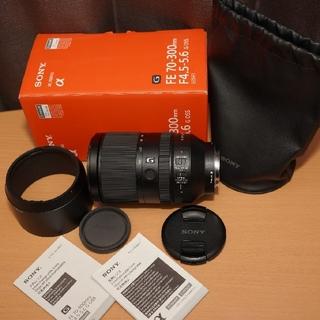 SONY - SONY FE 70-300mm F4.5-5.6 G OSS