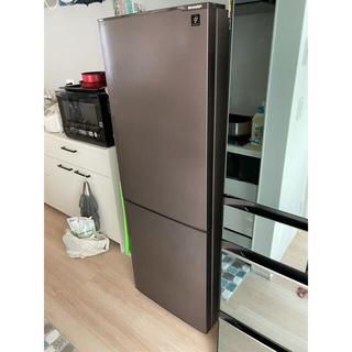 SHARP - SHARP 冷蔵庫