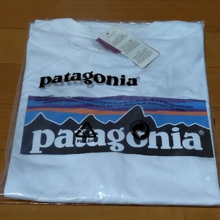 patagonia - パタゴニア Tシャツ Mサイズ 新品未使用 Patagonia