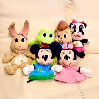 Disney - フロギーバニー パペット ズィッピー ポンポン ミッキーミニー パペット DWE