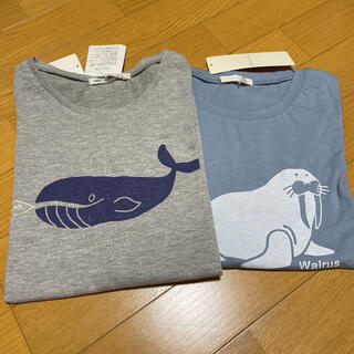 SM2 - SM2*ehkasopo  クジラTシャツ/ehkasopo  セイウチTシャツ