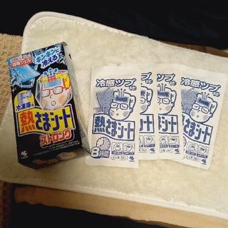 小林製薬 - 小林製薬 熱さまシート冷えピタ大人用 冷凍庫用2枚×5袋、冷蔵庫用3袋