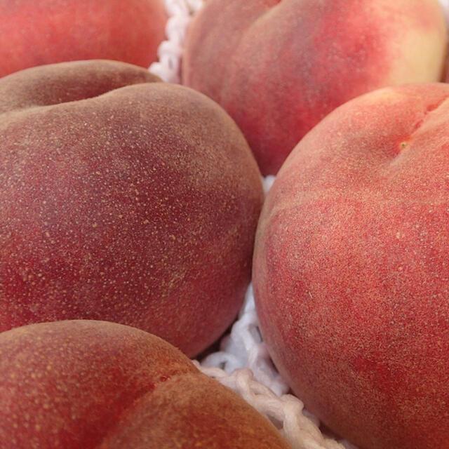 yunhko0715さま専用 山梨の甘い桃 大玉を2キロの箱に6個 食品/飲料/酒の食品(フルーツ)の商品写真