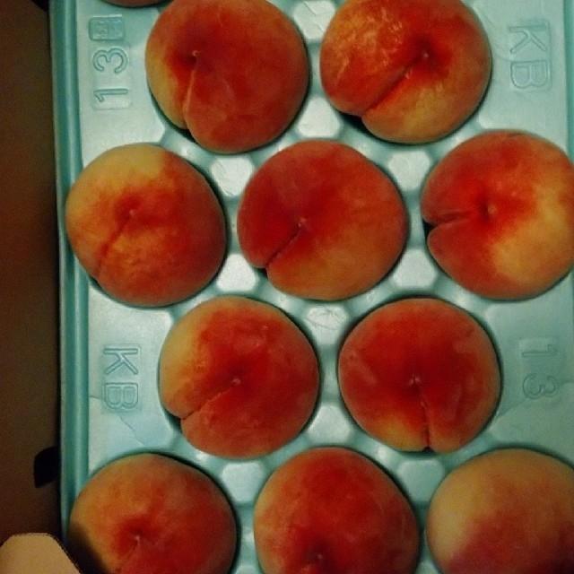 桃 果物 山梨県 食品/飲料/酒の食品(フルーツ)の商品写真