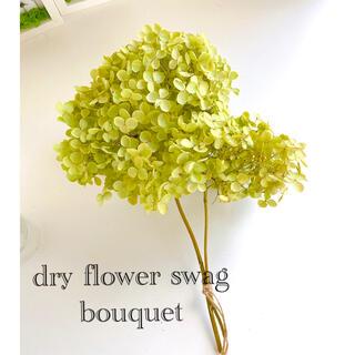 ドライフラワー ライムグリーンが綺麗な アナベル 紫陽花 M スワッグ ブーケ